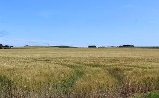 Andrew Stoddart Tenant Farmer headline