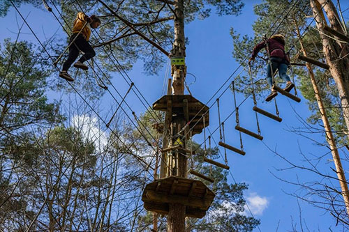GoApe-Dalkeith-Country-Park