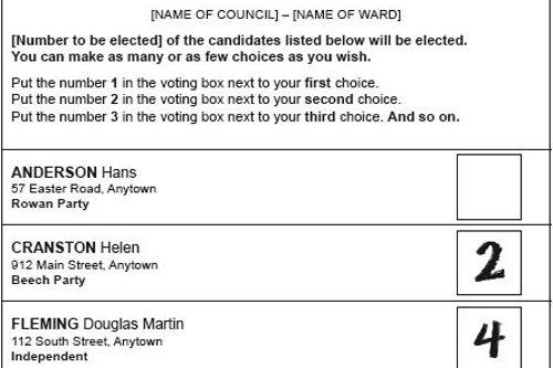 How To Vote Local Election Headline