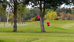 Things to do - Melville Golf Centre – Golf Course