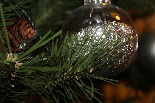 Midlothian-View-Christmas-Quiz