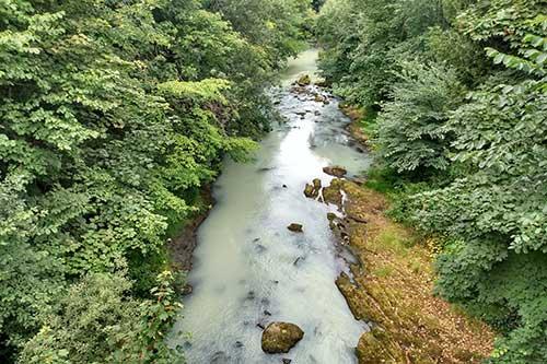 River Esk Pollution