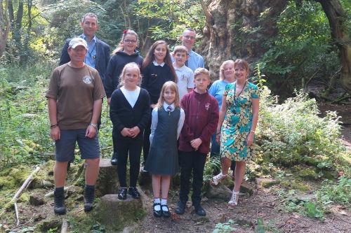 Roslin Primary trees